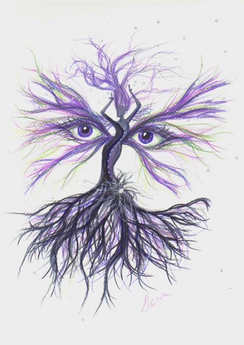 see-lavender-dawn-fairies